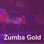Zumba Gold 20